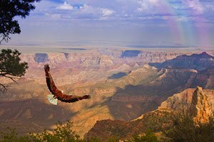 Grand Canyon Railroad Tour From Las Vegas